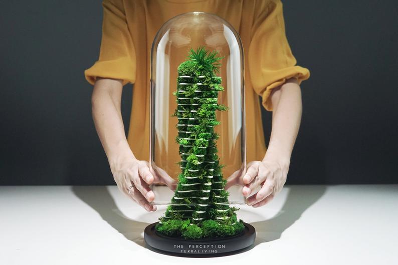 Etsy terrarium